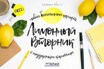 Современные шрифты кириллические – 16 лучших бесплатных кириллических шрифтов 2016 года — Оди