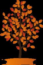 Осенние деревья на прозрачном фоне – Осенние деревья — Осенний клипарт — Кира-скрап
